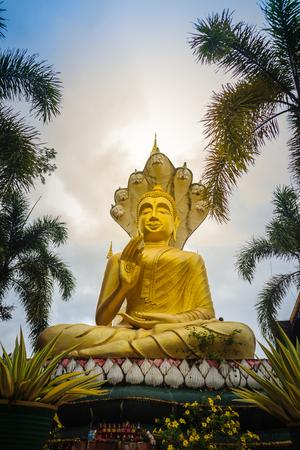 Beautiful golden Buddha statue with seven Phaya Naga heads under white clouds and blue sky background at Wat Tham Khuha Sawan, Khong Chiam, Ubon Ratchathani, Thailand.