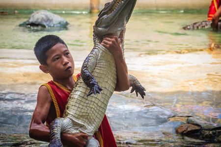 Samut Prakarn, Thailand - March 25, 2017: Boy and his team in dangerous crocodile shows. Risky crocodile shows in crocodile farm, one of the most impressive public crocodile shows in the world.