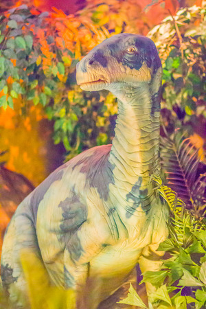 Cute model of Iguanodon dinosaur in the public museum. Iguanodon is a genus of ornithopod dinosaur that halfway between the swift bipedal hypsilophodontids of the mid-Jurassic and the duck-billed. Stock Photo