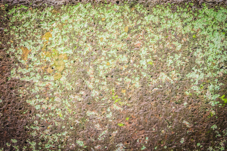 Laterite stone wall with grass and moss growth forming beautiful textured on the surface for background. Old laterite bricks texture with green grass and fresh moss.