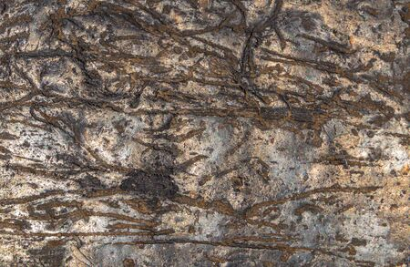 The wrinkled texture of old stone with a natural pattern, abstract natural dark background Reklamní fotografie