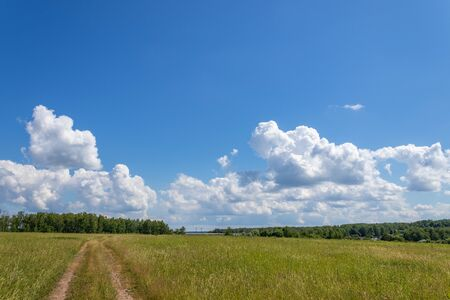 Bright summer landscape with blue sky. Country road through a field in the countryside. Moscow region Russia