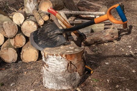 shovel stuck in the stump. Travelling, adventure, camping equipment