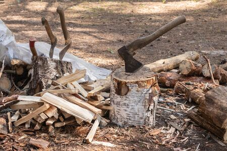 Two axes stuck in the stump. Axes are ready for chopping wood.Woodworking tool. Travelling adventure, camping equipment