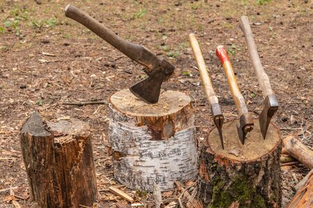 Several axes were thrust into the stump. The axes are ready for chopping wood.Woodworking tool. Travelling. adventure, camping equipment