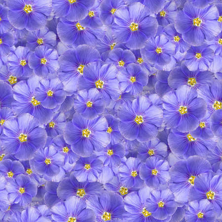 texture of a seamless flower pattern. decorative design elements