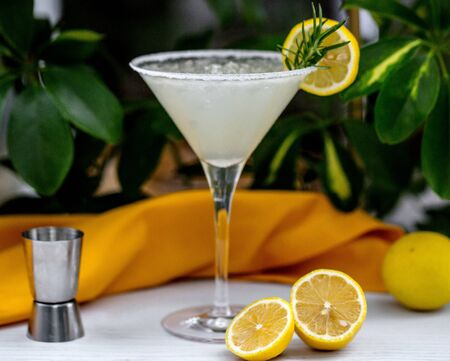 cocktail of martini glass garnished with rosemarine and lemon slices