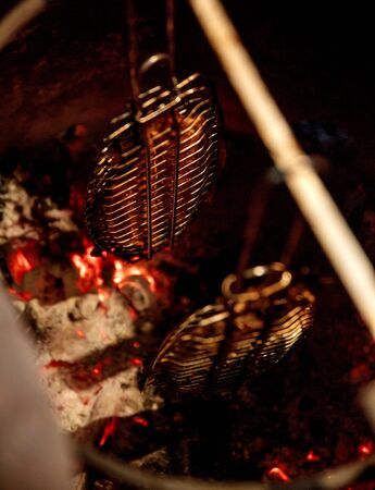 fried fish in barbecue oven