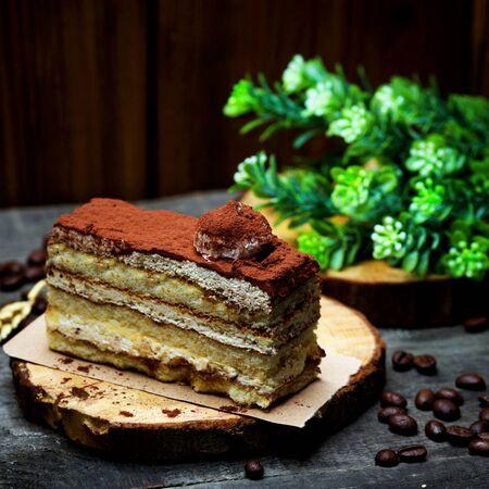 airy sponge cake cocoa coated
