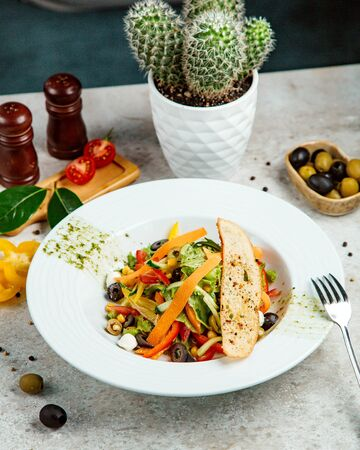 mixed vegetable salad with cracker