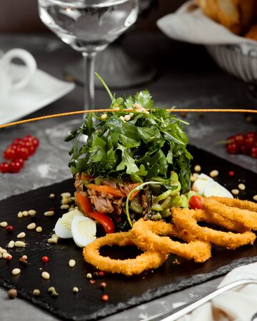 onion rings with vegetable salad