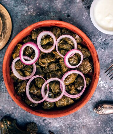 leaves dolma with sliced onions