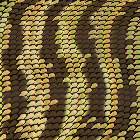 fulvous: Fulvous background in the form of snake scales Stock Photo