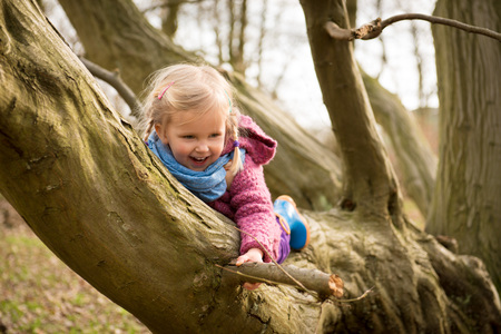 Petite fille active jouissant de l'escalade sur l'arbre Banque d'images