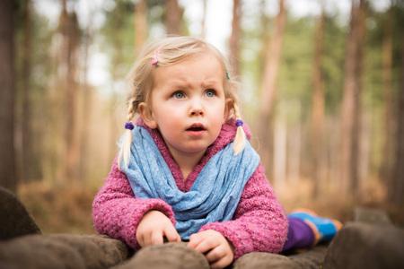 Petite girolle observant la nature dans la forêt en position couchée sur des troncs d'arbres Banque d'images