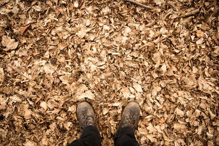 Bottes de randonnée en cuir masculin avec feuilles d'automne