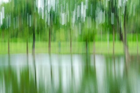 dream land: abstract forest in motion blur ,abstract colorful background Stock Photo