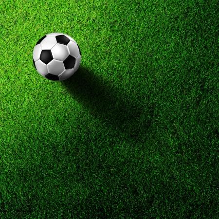 cancha de futbol: F�tbol de f�tbol en campo de hierba Foto de archivo