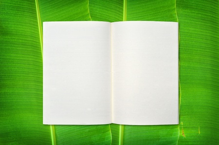 notebook on banana leaf background Stock Photo - 9648125