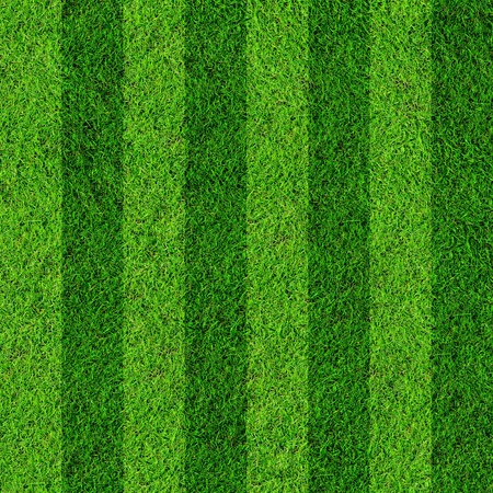sports backgrounds: football grass field Stock Photo