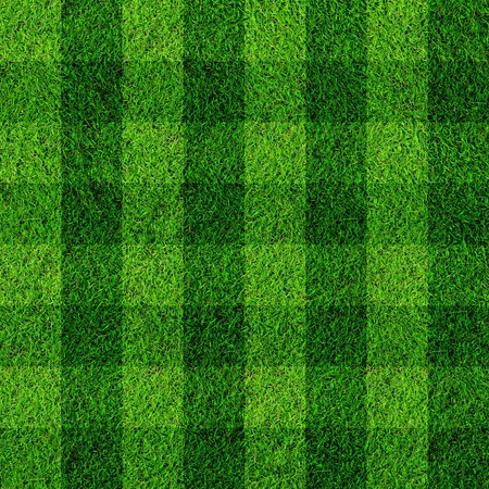 ball field: football grass field Stock Photo