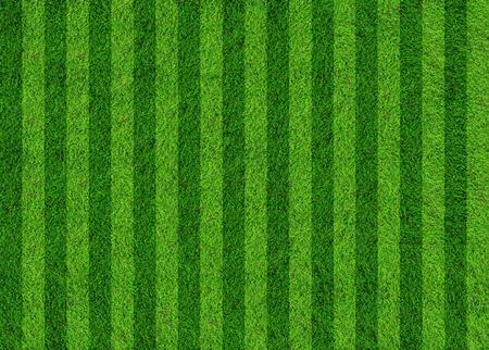 cancha de futbol: campo de f�tbol de hierba Foto de archivo