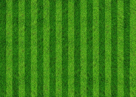 football grass field Stock Photo - 9647932