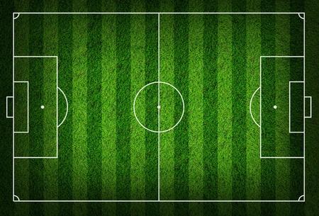 campo di calcio: campo di calcio in erba