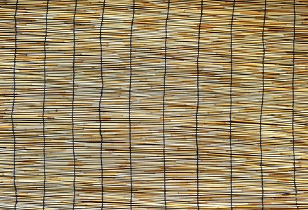 Bamboo blind. photo