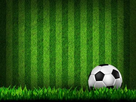 soccer: Fútbol Fútbol en campo de hierba