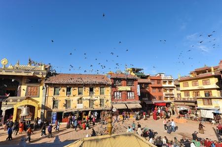 Traditionali house and Pigeon  in Kathmandu,nepal