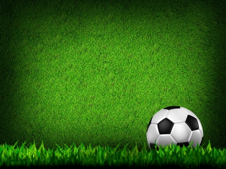soccer fields: Football   soccer  ball   in green grass Stock Photo