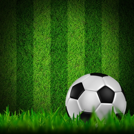 Football   soccer  ball   in green grass Stock Photo - 13654325