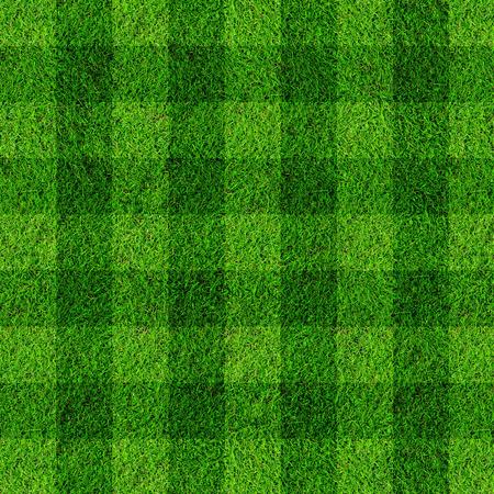 grass field: soccer football on grass field.