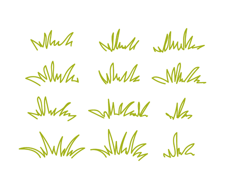 Set of green grass tufts, clip art, transparent background.