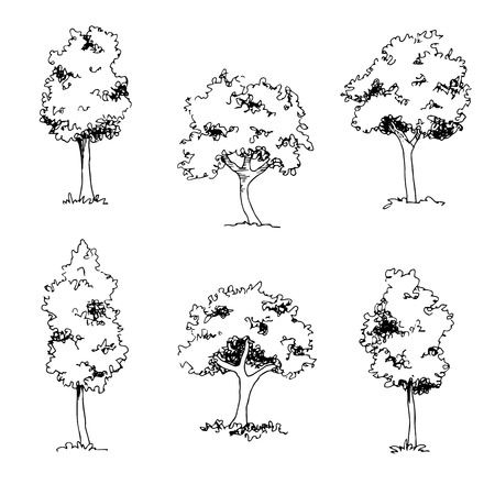 Tree sketch, architect hand drawing for black landscape element