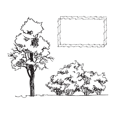 Set of hand drawn architect tree and bushes, tree silhouette, dendrology sketch collection, graphic template
