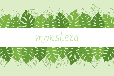 Hand drawn tropical frame, band with copy space design with monstera deliciosa palm leaves