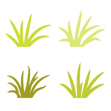 Set of grass tufts, clip art, transparent background