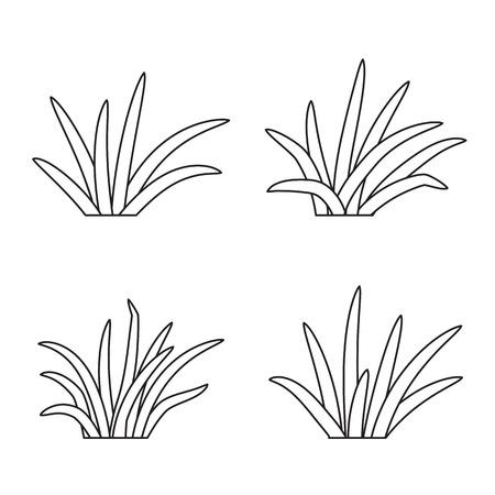 Set of grass tufts, clip art, transparent background