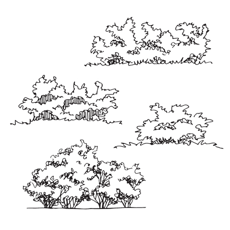 Set of hand drawn architect bushes, dendrology sketch collection, graphic template Illustration