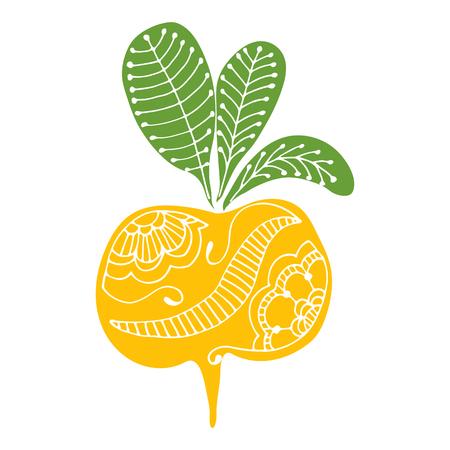 Line art root vegetables, hand drawing doodles turnips Illustration