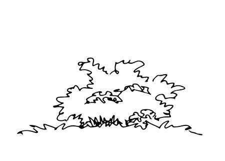 Hand drawn architect shrub. Vector sketch. Architectural illustration Vettoriali