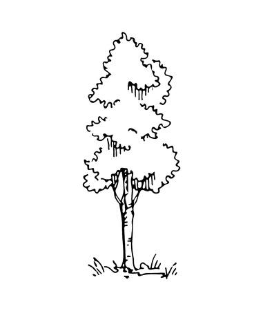 Hand drawn architect tree. Vector sketch. Architectural illustration Vettoriali