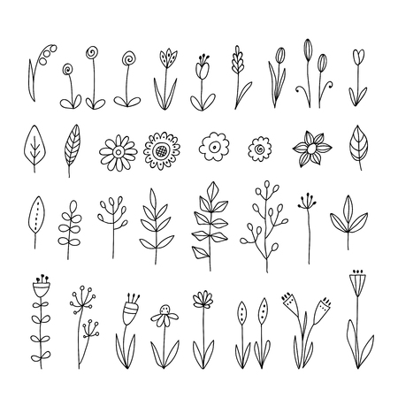 Set of doodle flowers and leaves. Hand drawn floral elements on transparent background. Foto de archivo - 115589603