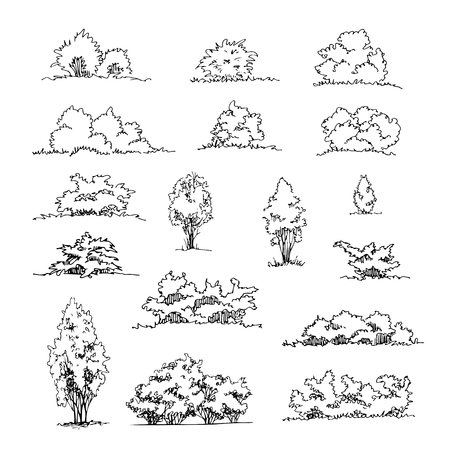 Set of hand drawn architect shrubs Vector sketch. Architectural illustration, landscape elements