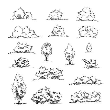 Set of hand drawn architect shrubs Vector sketch. Architectural illustration, landscape elements