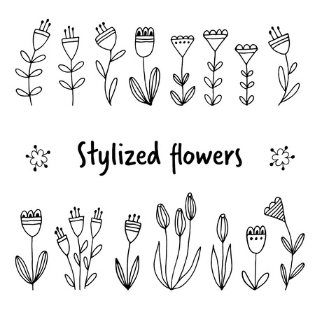 Stylized garden flowers, hand drawn lineart floral elements, outline style