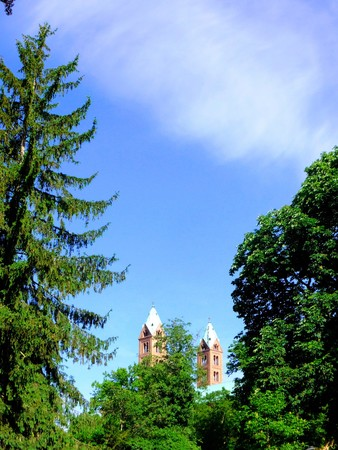 poke: Spire of the Speyer Cathedral is surrounded by green