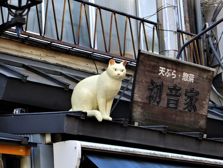 White cats with long-established shops of Yanaka Ginza monument 報道画像